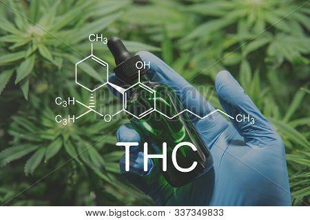 Thc Formula . Cannabis Extract, Oil Cbd Thc Cannabis. Close Up, Product Of Hemp, Medical Marijuana.