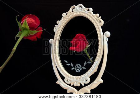Reflection Of Rose In Vintage Mirror On Black Background. Vain Concept. Mirror Mirror On The Wall.