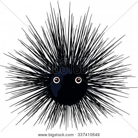 Illustration of very cute urchin