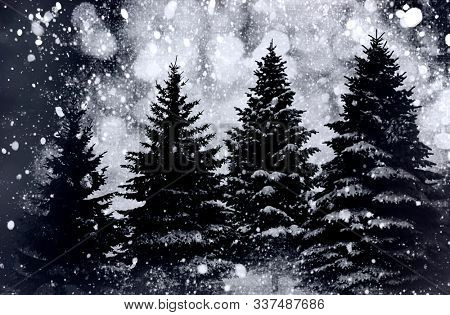 Winter background landscape with fir trees and pines in snow.Merry Christmas and happy new year concept.