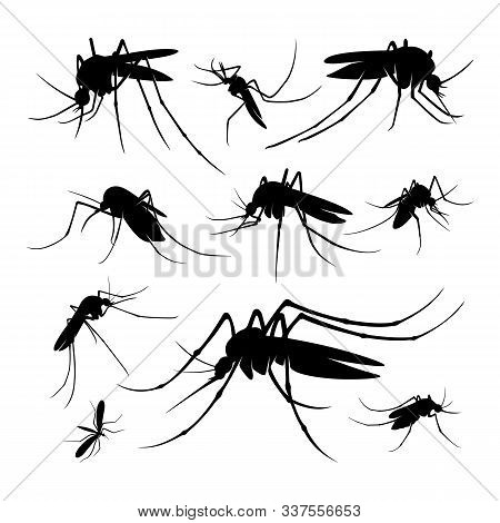 Set Of Mosquito Logo Design Vector Illustration. Mosquito Design Template