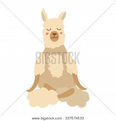 Cartoon Lama Performing Yoga Exercise. Alpaca Cartoon Character Sitting In Lotus Posture And Meditat