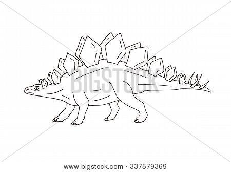 Vector Hand Drawn Sketch Doodle Stegosaurus Dinosaur Isolated On White Background