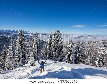 Snowboarder Freerider And Beautiful Landscape With Pine Trees Covered With Snow On Background Blue S