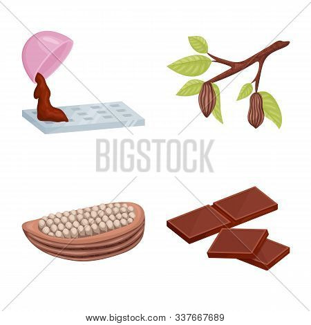 Vector Design Of Cocoa And Beans Sign. Collection Of Cocoa And Sweetness Stock Symbol For Web.