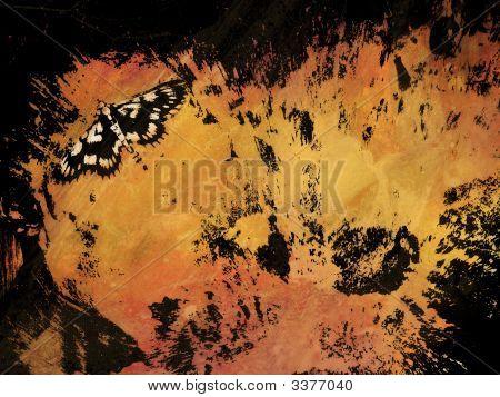 moth on a hot warm splash collage poster