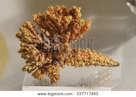 Beautiful Dendrites Of Nickel With Gilding Close-up On A Stand In The Museum. Precious Natural Resou