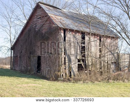 Red wooden barn is faded and peeling from exterior of barn and vines grow up its' side.