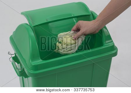 Woman Hand Holding Cabbage Into The Trash Isolated On White Background