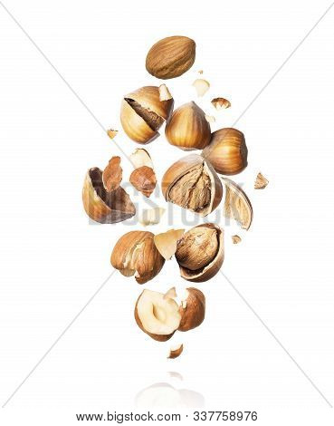 Cracked Hazelnuts Fall Down Close-up Isolated On White Background