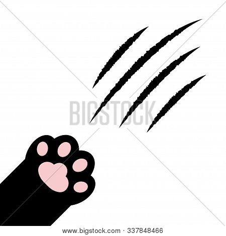 Cat Claw Scratching. Black Paw Print Leg Foot In The Corner. Bloody Claws Animal Scratch Scrape Trac