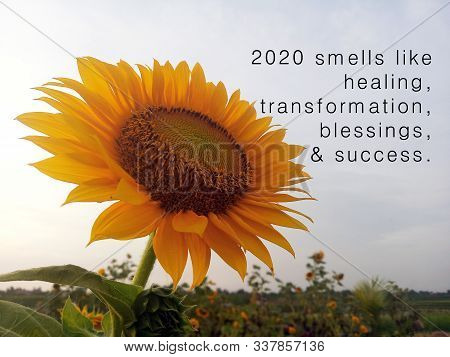 New Year Inspirational Quote - 2020 Smells Like Healing, Transformation, Blessings, And Success. Wit