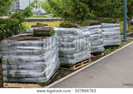 Stacks Of Sod Rolls For New Lawn For Landscaping. Lawn Grass In Rolls On Pallets Against Of The Stre