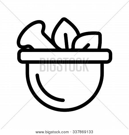 Medicinal Herbs Icon Vector. Thin Line Sign. Isolated Contour Symbol Illustration