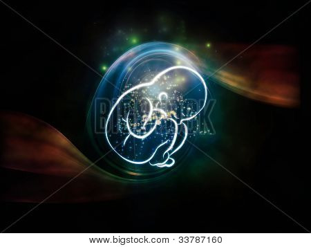 Fetus Visualization