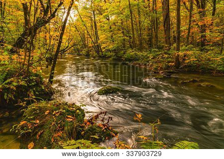 Scenic View Of Beautiful Oirase River Flow In The Forest Of Colorful Foliage In Autumn Season At Oir