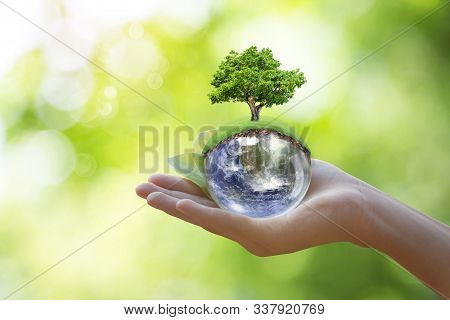 World In Hand And Blurred Beautiful Bokeh In The Garden Background . World Environment Day Concept W