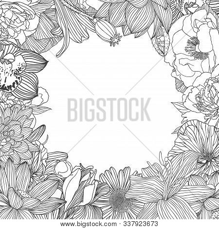 Decorative Frame Of Different Vector Flowers. Linear Hand Drawn Lotus, Orchid, Mallow, Peony, Chamom