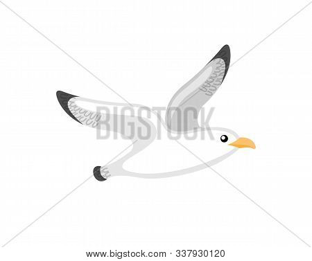 Flying Seagull, Little Bird With Black And White Plumage. Single Animal On White, Cartoon Of Atlanti
