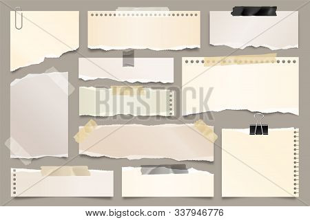 Colored Ripped Paper Strips Collection. Realistic Paper Scraps With Torn Edges And Adhesive Tape. St
