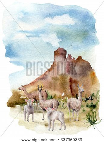 Watercolor Spring Card With Lamas And Lambs. Hand Painted Green Meadow With Grass, Cacti And Sheep I