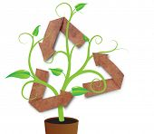 recycle symbol with green young plant poster