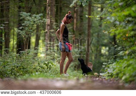 Young Female Obedience Trainer  Training Her Black Labrador Puppy Who Is Sitting In Front Of Her Loo