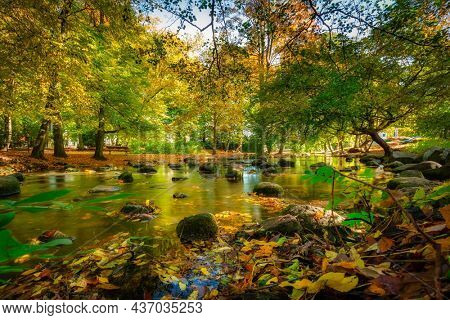 Autumn in the Oliwa Park of Gdansk, Poland