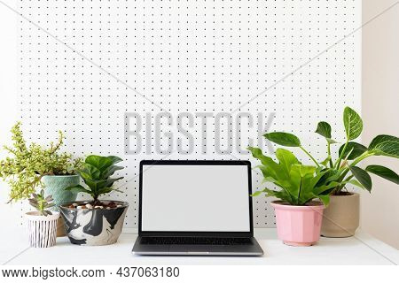 Blank laptop screen on a green workstation