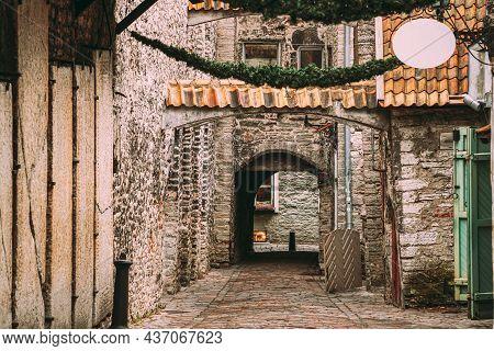 Tallinn, Estonia. Ancient Tombstones In St. Catherines Passage From St. Catherines Dominican Monaste