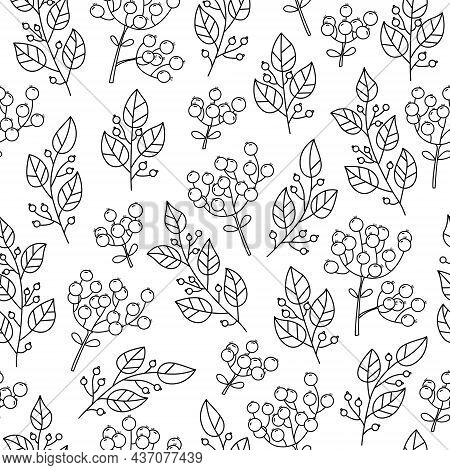 Botanical Vector Seamless Pattern With Plants And Flowers. Outline Illustrations