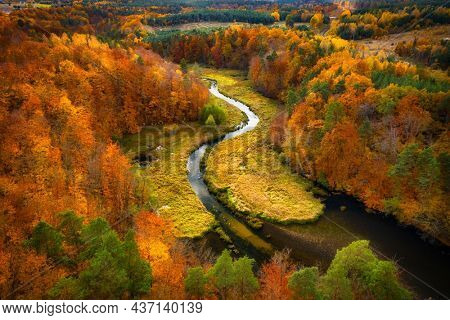 Autumnal landscape of the forest and twisted river in Kashubia. Poland
