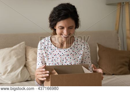 Happy Shopper Receiving Order From Internet Store