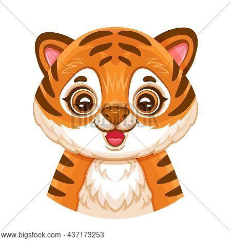 Cute African Tiger Cub Face Portrait. Funny Little Baby Bengal Wildcat Head. Orange Striped Wild Jun
