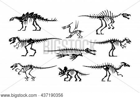Black Dinosaur Bones. Dino Skeleton And Skull Silhouettes. Prehistoric Animal Fossil. Jurassic Tyran