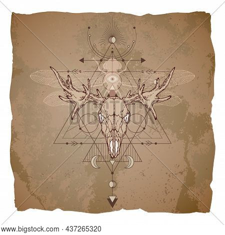 Illustration With Hand Drawn Moose Skull, Dragonfly And Sacred Geometric Symbol On Vintage Paper Bac