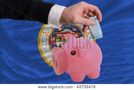 Funding Euro Into Piggy Rich Bank Flag Of American State Of Minnesota