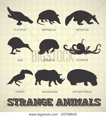 Vector Set: Strange Animal Silhouettes