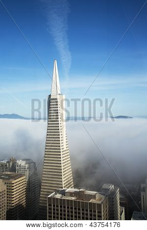 Areal view on Transamerica pyramid and city of San Francisco covered by dense fog