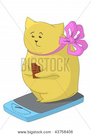 Cartoon fat animal weigh yourself on the scale and eat chocolate, feel the pain of their excess weight. Vector poster