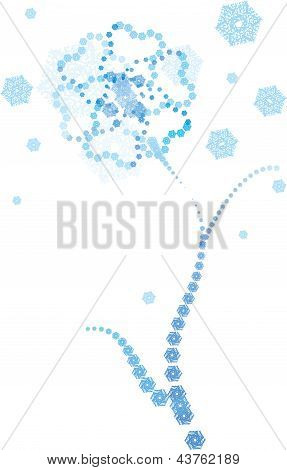 snow ice vector flower