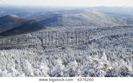 Winter  Landscape In The Winter 01 All