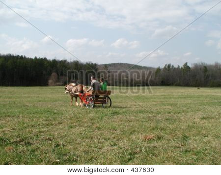 Driving Off (pony And Cart)