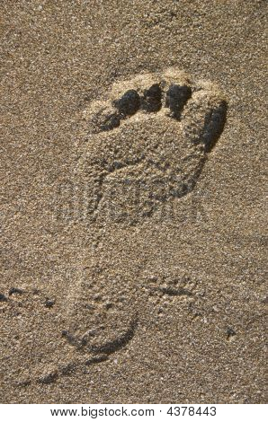 human footprint on sand on sea shore poster