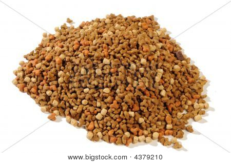 Dry Forage For Kittens