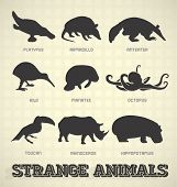 Collection of strange and odd animal silhouettes poster