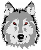 Abstract vector illustration of wolf head full face poster