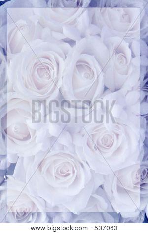 Blue Rose Stationary
