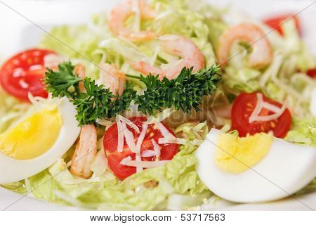 Beautiful And Appetizing Salad From Vegetables Closeup