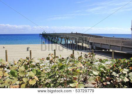Pier In Deerfield Beach